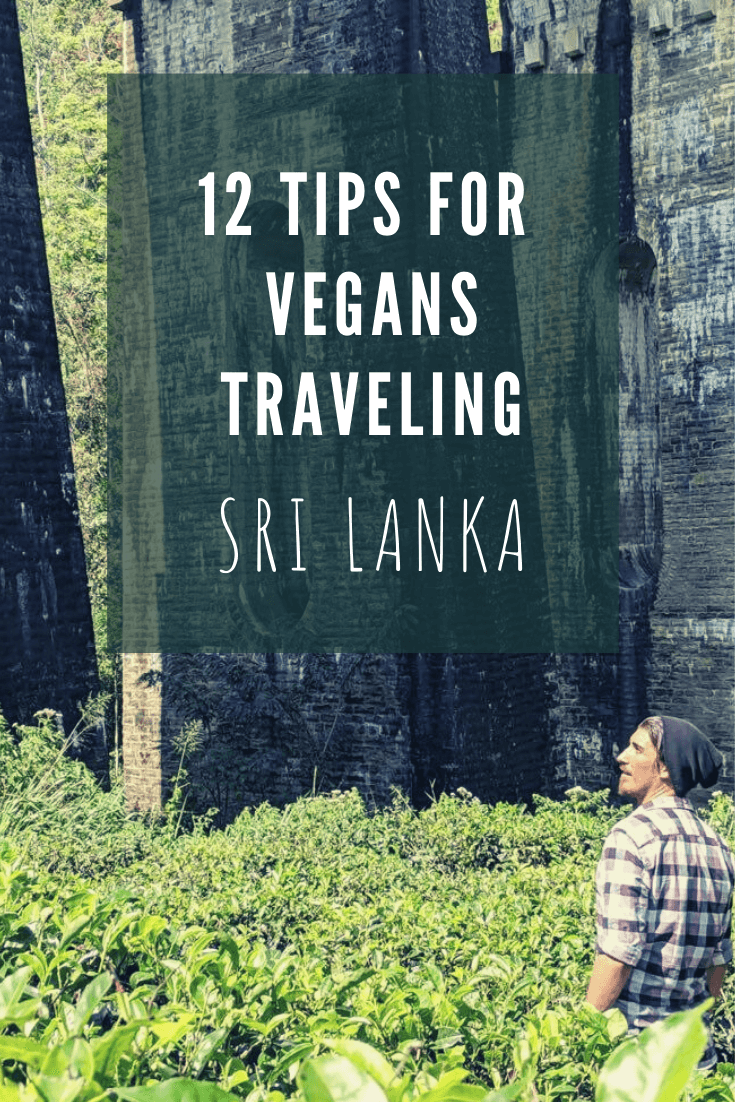 vegan traveler tips sri lanka