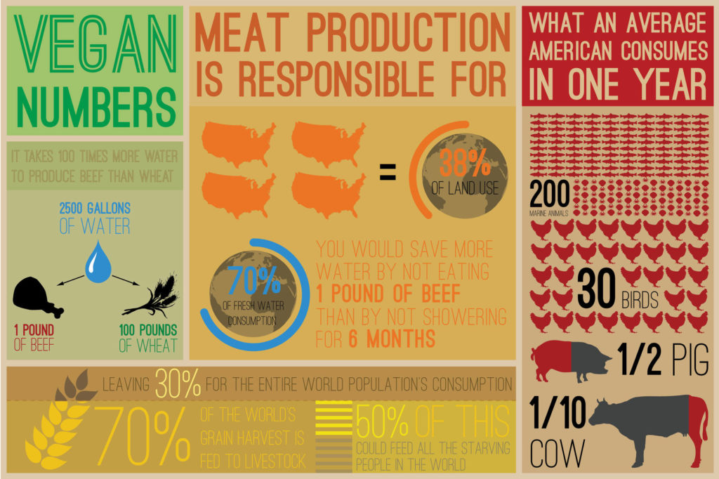 vegan infographic numbers