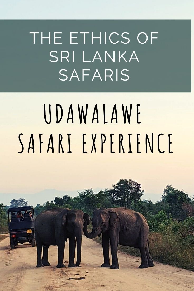 sri lanka safari ethical tourism