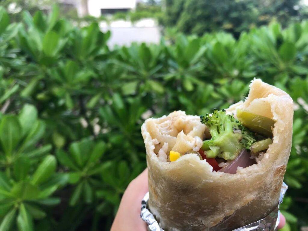 vegan street burrito tulum