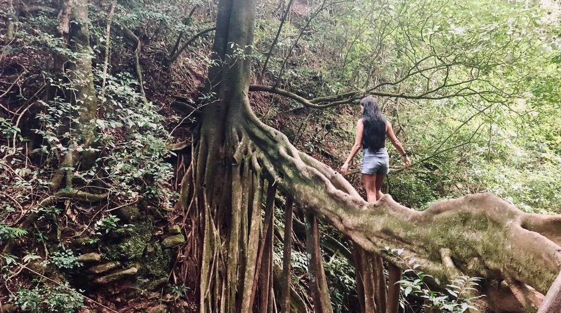 best things to do in monteverde costa rica
