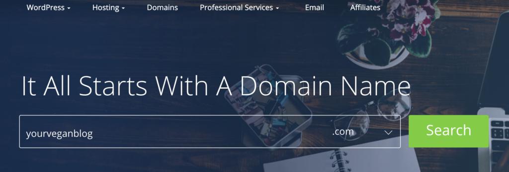 choosing a domain name via bluehost