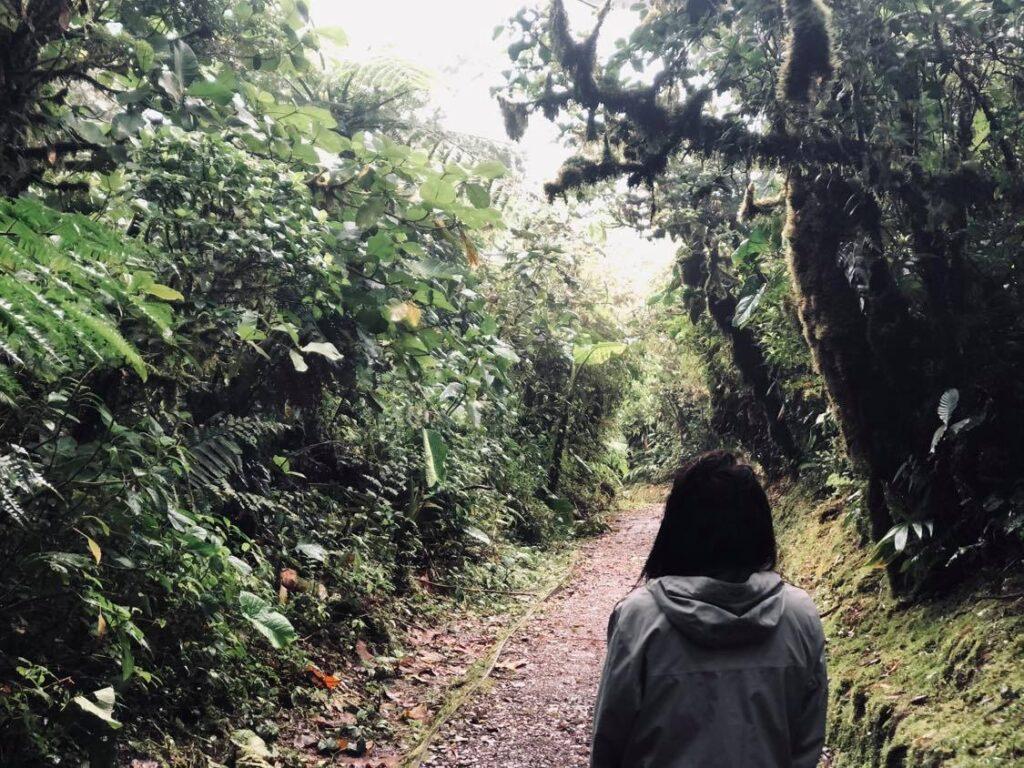 cloud forest hike monteverde