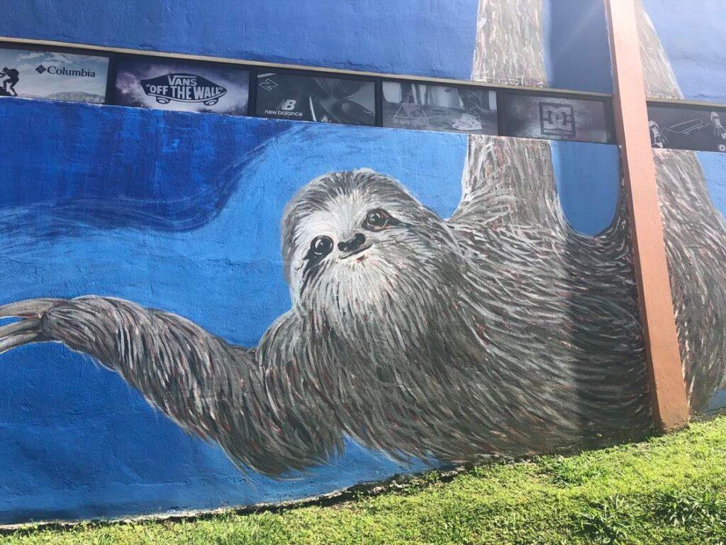 santa elena street art monteverde