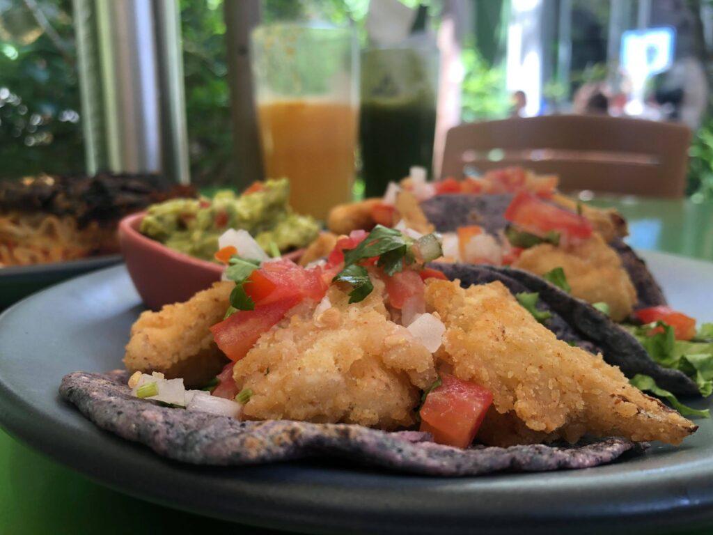cauliflower tacos in valladolid