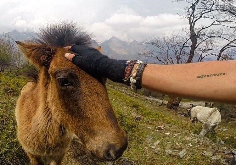 vegan travels in nepal