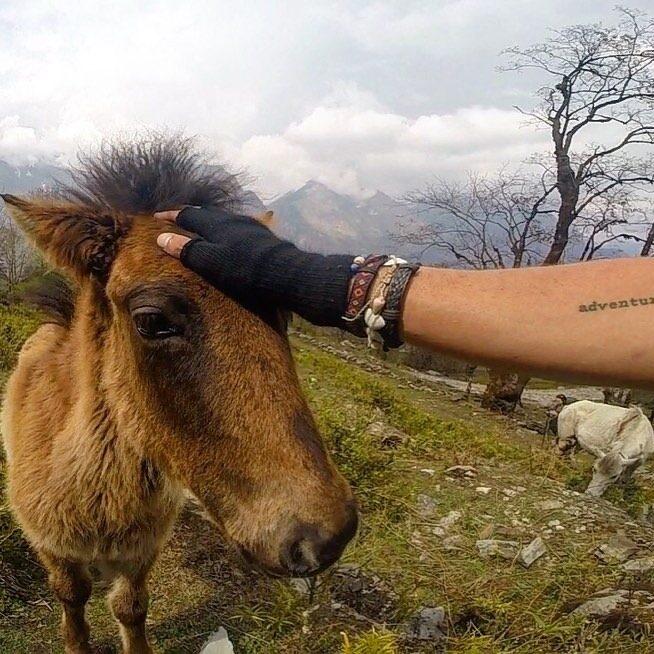vegan travels in nepal